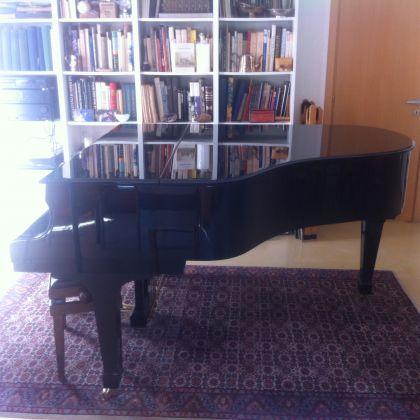 Grand Piano - image 4