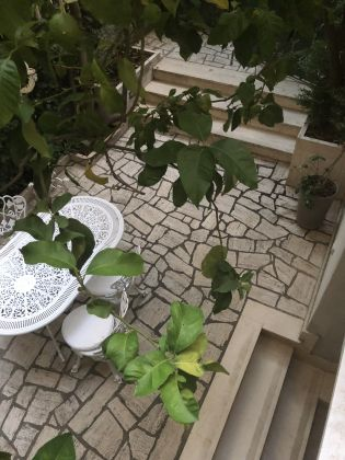 Pinciano - 3-bedroom flat with garden and dependance - image 15