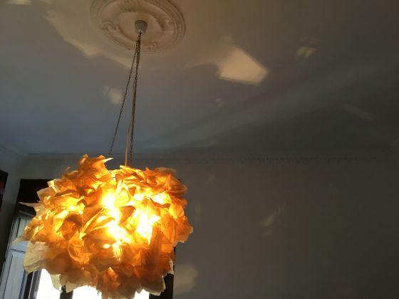 Amazing light fixture! - image 1