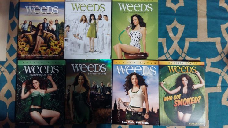 Lot of DVDs - TV Series WEEDS - image 3