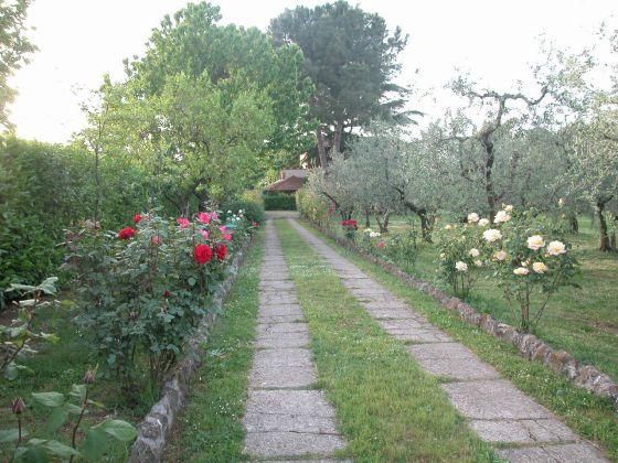 Zagarolo - Charming bi-level villa for sale - image 10
