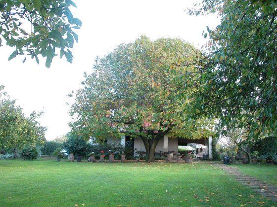 Zagarolo - Charming bi-level villa for sale - image 17