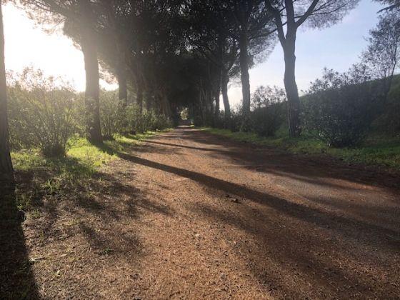 Villa in private ranch Laurentina/Divino Amore - image 16