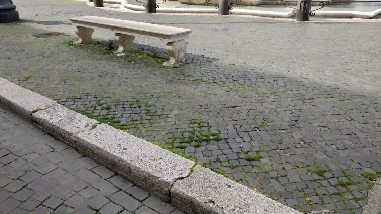 Rome: Grass grows in deserted Piazza Navona - image 9