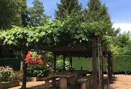 Beautiful garden villa in northern Lazio 'Borghi piu belli d'Italia' - image 4