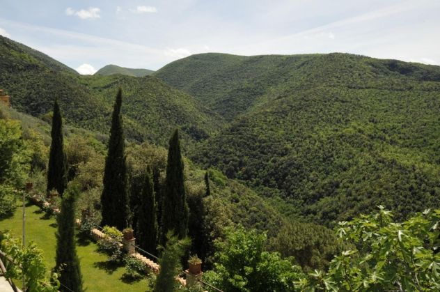 Flats for rent in beautiful Borgo in Sabina - image 12