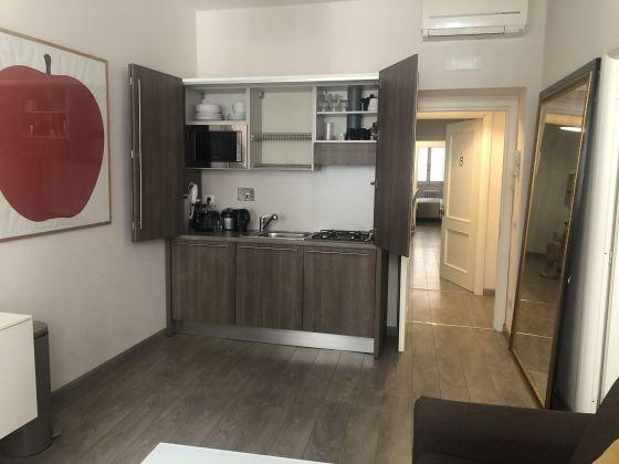 Bright remodeled, 1-bedroom fully furnished flat - image 4