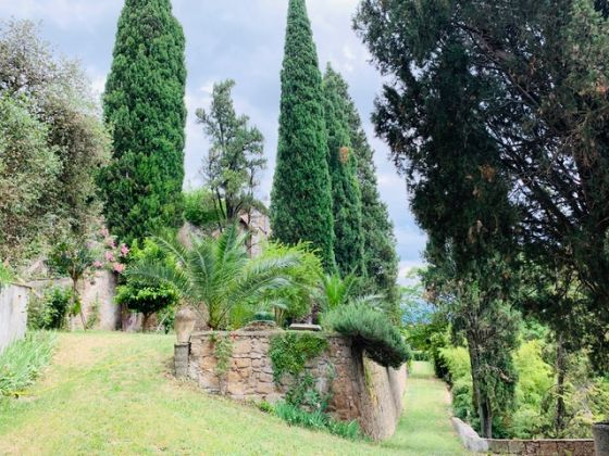 Holiday house in Umbria - La Torre Olivara - image 4