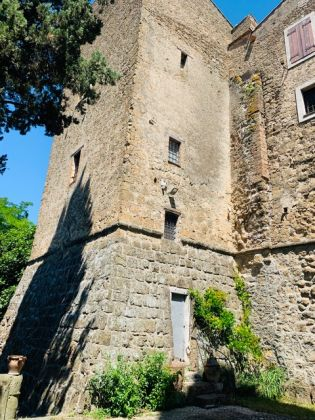 Holiday house in Umbria - La Torre dell'Olio - image 8