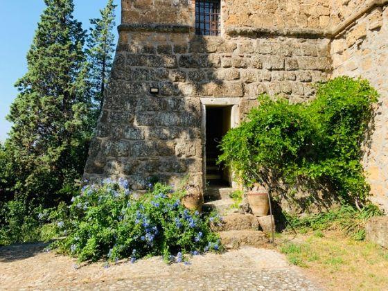 Holiday house in Umbria - La Torre Olivara - image 12
