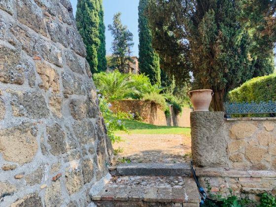 Holiday house in Umbria - La Torre Olivara - image 9