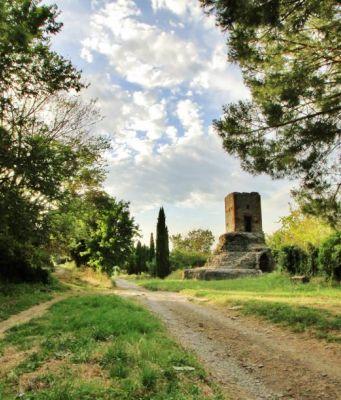 Via Appia Antica. Ph: Nawaf Ahmed Alsamhan