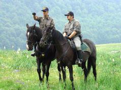 Forestry Corps (Corpo Forestale dello Stato)