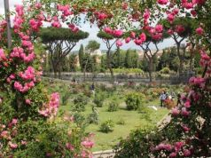 Rose gardening lessons in Rome