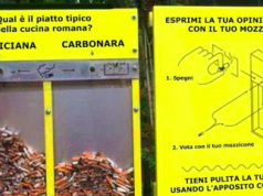 Amatriciana or Carbonara?