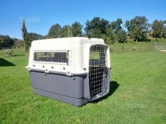 Dog transport crate XL/IATA