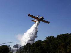 Arson blamed for surge in Rome bushfires