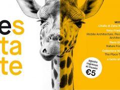 MAXXI €5 August entry fee
