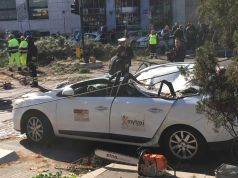 Falling tree hits a taxi at traffic lights in Rome, Lungotevere. (2) ph: Valentina Tocchi