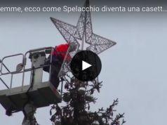 Spelacchio's second life
