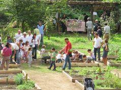 Hortus Urbis: Natura in Città