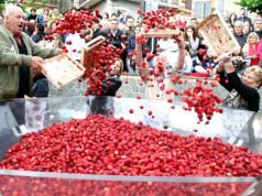Nemi strawberry festival near Rome