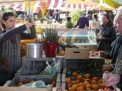 Rome farmers' market at Circus Maximus