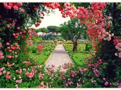 Rome's rose garden open in October