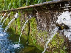 Water and Culture: A View from Rome
