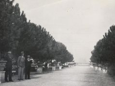 Rome's Orange Garden in the 1930s