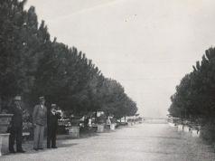 Rome's Orange Garden in the 1930s