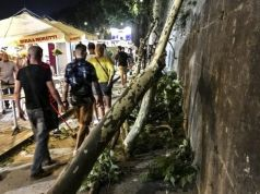 Family hit by falling branch in Rome