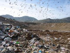 Rome: controversy over new rubbish dump