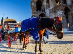 Rome bans horse-drawn carriages from city streets