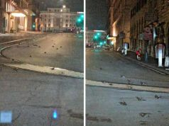 Rome street covered in dead birds after New Year fireworks