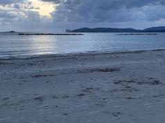 Beautiful flat on the beach
