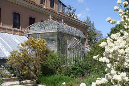 Rome's Botanical Gardens: Orto Botanico