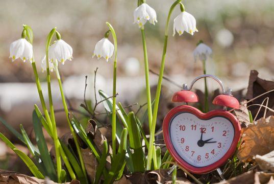 Clocks spring forward on 25 March