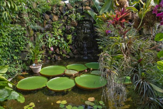 Ischia: La Mortella Gardens reopen to tourists