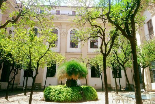 Rome libraries open their gardens for outdoor study and smart-working