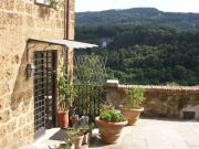 Sunny 2-beds house with garden for rent in Orte