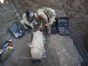 Army deactivates WWII Ciampino bomb