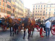 Stricter checks on Rome's botticelle