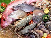 Safe food - food security