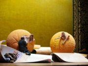 L'Amour des Trois Oranges by Prokofiev