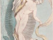 XVIII Cent. erotic art illustrations collection