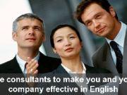 Professional English Advisors Srl