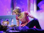 Rapunzel the musical in Rome