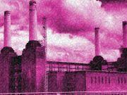 Pink Floyd Legend: Animals - 40th Anniversary Show