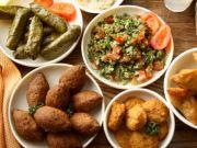 Lebanese Fundraiser Dinner in Rome